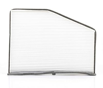 bsg-polen-filtre-karbonsuz-golf5-jetta-caddy-passat-a3-leon-04-90-145-008